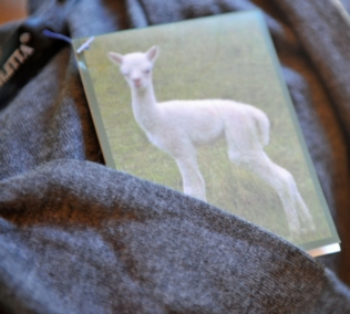 Alpaca Fleece & Garments